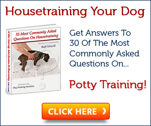 Dog House Training