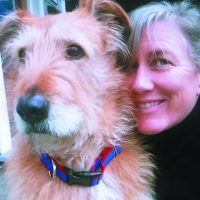 New Solutions - Whole Dog Journal